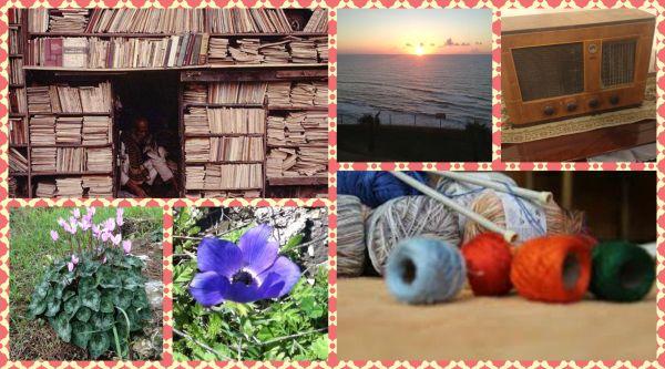 פרחים גליליים - זיכרונות ילדותי ;ספרים ;שקיעה - זיכרונות נעוריי; שורשים וסריגה